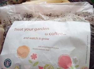 Coffee grounds fertiliser from Starbucks