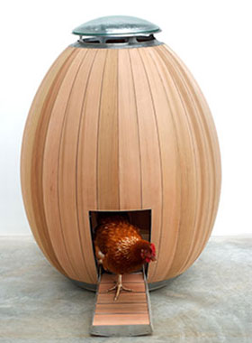 Nogg Chicken Coop