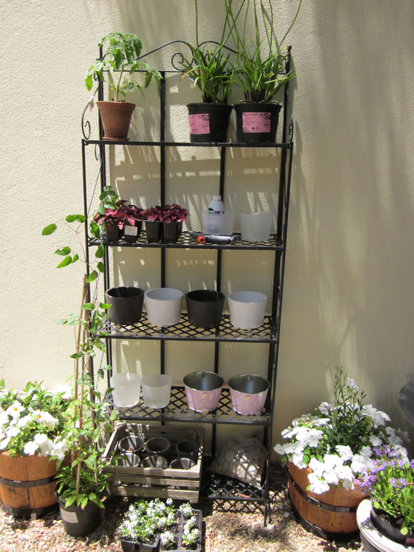Beautiful Charming Garden Stands For Plants New Plant Stand
