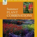 Summer Plant Combinations