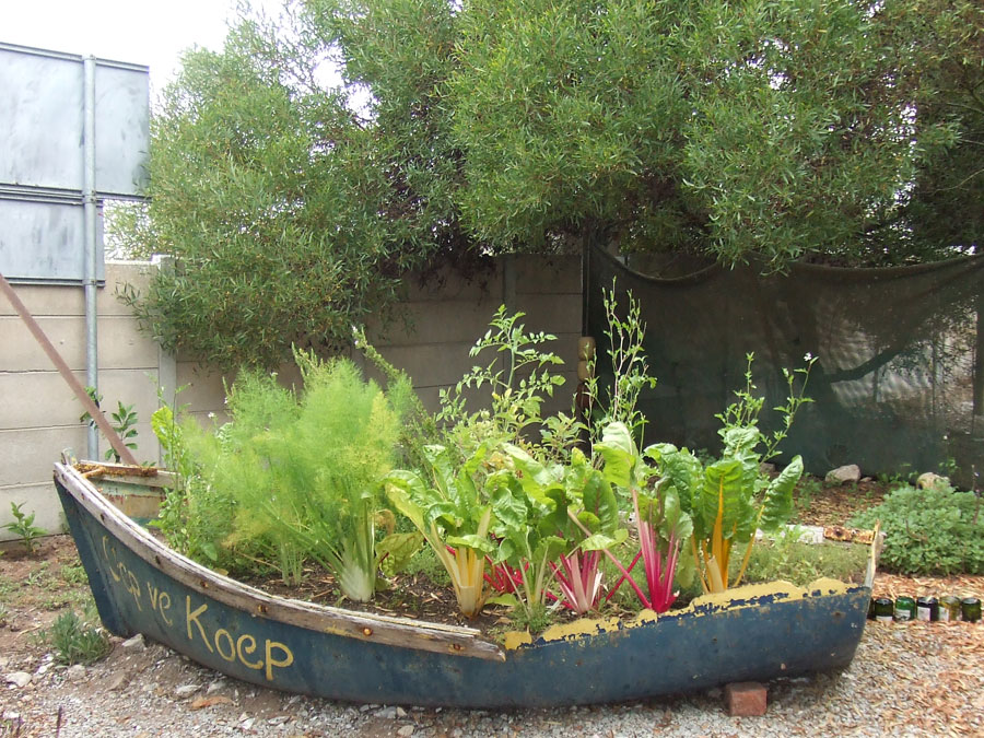 Unusual Planters by The Gardening Blog