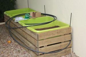 The new veggie planter