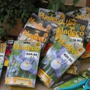 Hadeco Bulbs