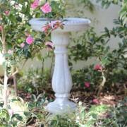 Non plant Bird Bath