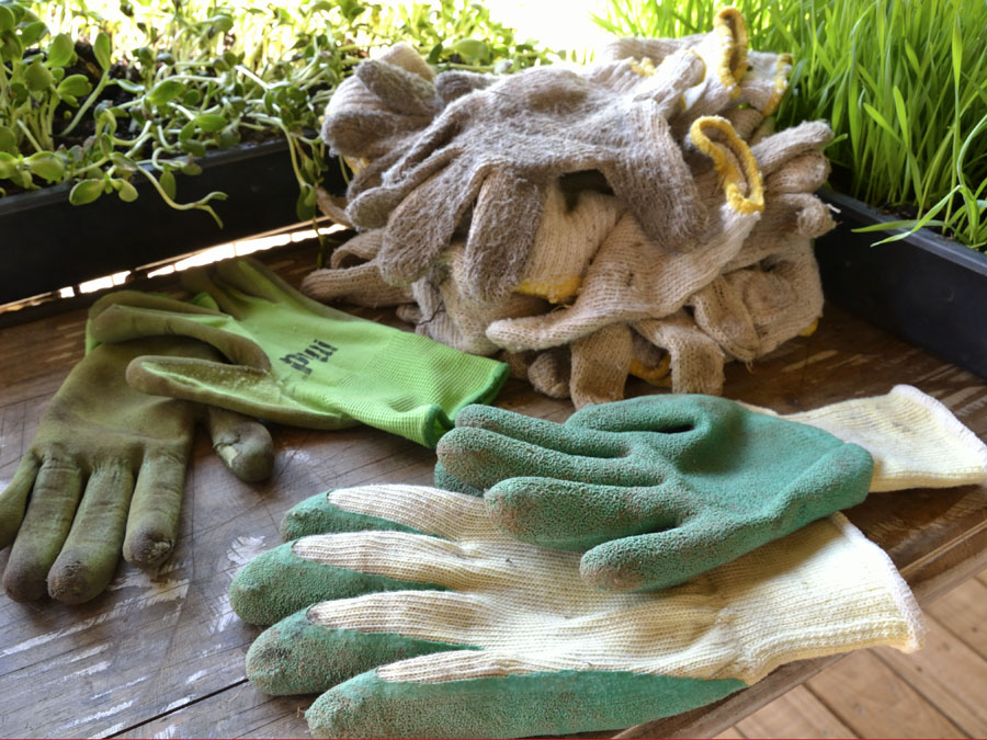 Garden glove audition by The Gardening Blog