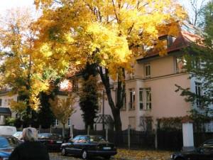 Autumn in München