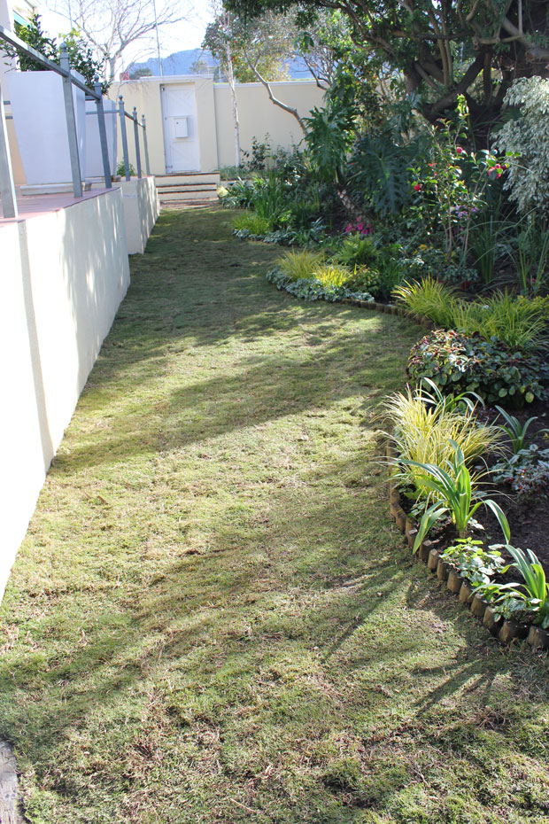 The new lawn area