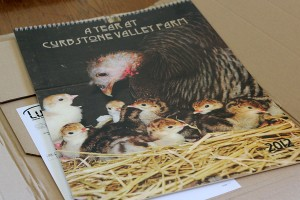 "Unpacking ""A Year at Curbstone Valley Farm"""