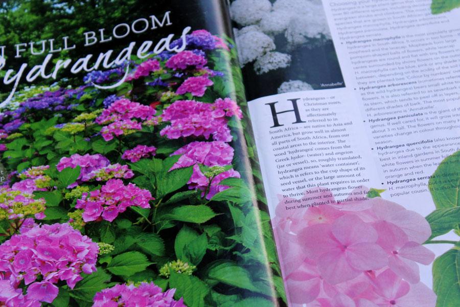 SA Garden Magazine