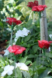Impatiens and 'roses'
