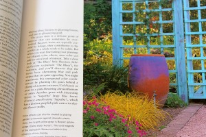 Grasses by Nancy Ondra, photos by Saxon Holt