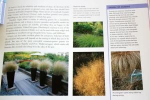 Complete Planting Design