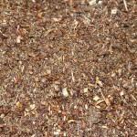 Close up of Rooibos Mulch