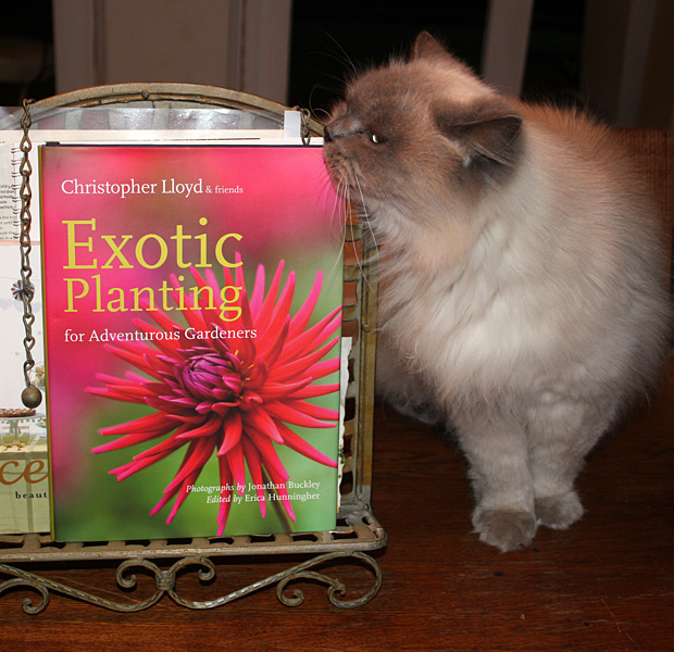 Book Review: Exotic Planting