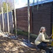 03 Back fence 04