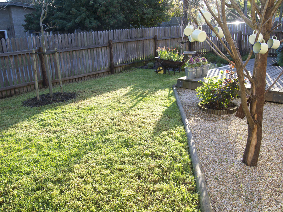 Front Garden Cleanup By The Gardening Blog