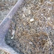 03 Composting 02