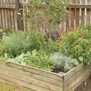 March Garden33