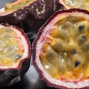 Bountiful fruit 10