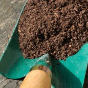 Join the Big Soil Test Experiment!