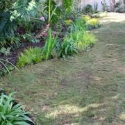 Newly laid lawn